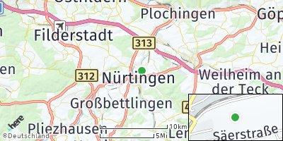Google Map of Zizishausen