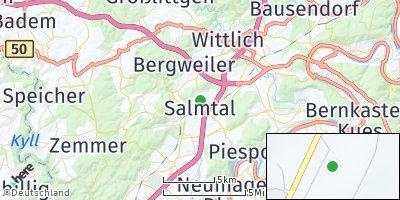 Google Map of Salmtal