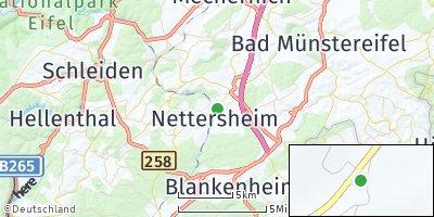 Google Map of Nettersheim
