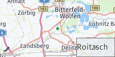 Google Map of Roitzsch bei Bitterfeld