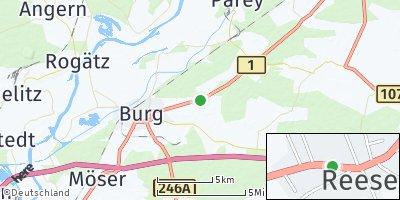 Google Map of Reesen
