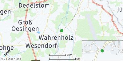 Google Map of Schönewörde