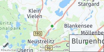 Google Map of Blumenholz