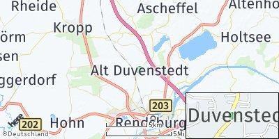 Google Map of Alt Duvenstedt
